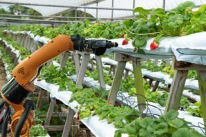 Agriculture vertical farming technology Vip Rubber and Plastic